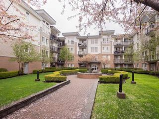 "Photo 19: 221 5430 201 Street in Langley: Langley City Condo for sale in ""The Sonnet"" : MLS®# R2257402"