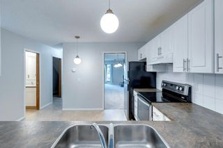 Photo 10: 406 17 Avenue NW in Calgary: Mount Pleasant Detached for sale : MLS®# A1145133