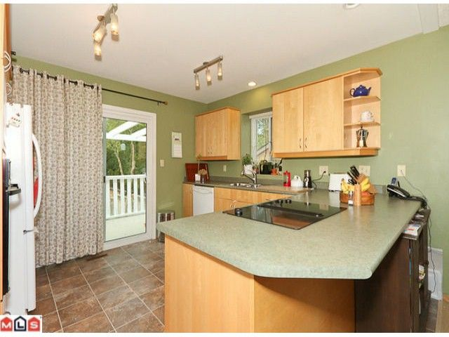 Photo 4: Photos: 13960 66TH Avenue in Surrey: East Newton House for sale : MLS®# F1112926