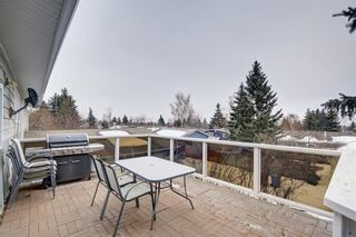 Photo 14: 7243 65 Avenue NW in Calgary: Silver Springs House for sale : MLS®# C4174046