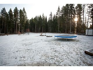 """Photo 2: 130 BORLAND Drive: 150 Mile House House for sale in """"BORLAND VALLEY"""" (Williams Lake (Zone 27))  : MLS®# N241052"""