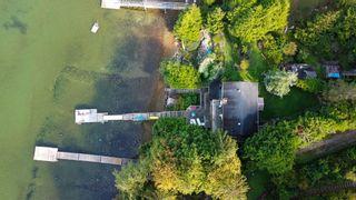 Photo 7: 7035 PORPOISE Drive in Sechelt: Sechelt District House for sale (Sunshine Coast)  : MLS®# R2621611