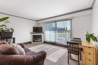 Photo 6: 302 823 5 Street NE in Calgary: Renfrew Apartment for sale : MLS®# A1121202