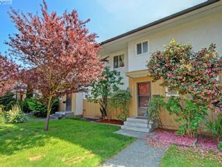 Photo 1: 3626 Tillicum Rd in VICTORIA: SW Tillicum Row/Townhouse for sale (Saanich West)  : MLS®# 787075