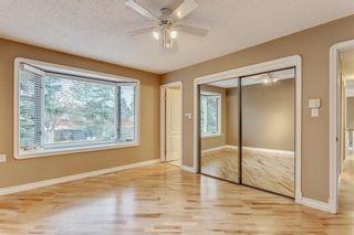 Photo 18: 132 LAKE ADAMS Green SE in Calgary: Lake Bonavista House for sale : MLS®# C4142300