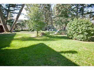 Photo 16: 909 BEGBIE Crescent in Williams Lake: Esler/Dog Creek House for sale (Williams Lake (Zone 27))  : MLS®# N240826