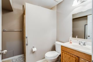Photo 16: 102 2384 Sagewood Gate SW: Airdrie Semi Detached for sale : MLS®# A1114364