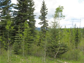 Photo 3: 265139 Jamieson Road: Rural Bighorn M.D. Residential Detached Single Family for sale : MLS®# C3620843