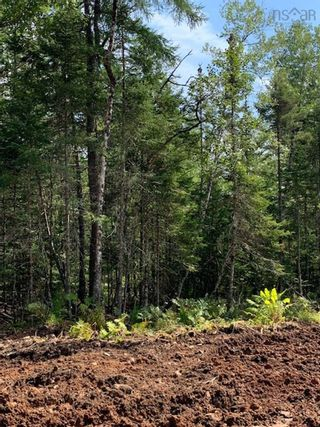 Photo 5: Lot 16 Fairway Avenue in Shubenacadie East: 105-East Hants/Colchester West Vacant Land for sale (Halifax-Dartmouth)  : MLS®# 202122117