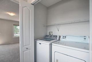 Photo 39: 311 TARALAKE Terrace NE in Calgary: Taradale Detached for sale : MLS®# A1128054