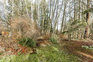 Photo 11: 13853 64 Avenue in Surrey: West Newton House for sale : MLS®# R2337342