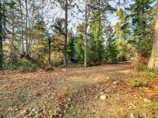 Photo 4: 581 Downey Rd in NORTH SAANICH: NS Deep Cove Land for sale (North Saanich)  : MLS®# 830478