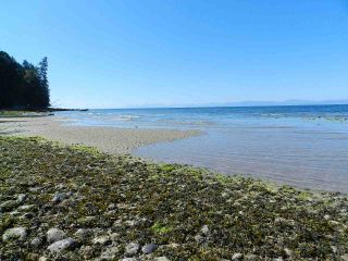 """Photo 37: 5157 RADCLIFFE Road in Sechelt: Sechelt District House for sale in """"Selma Park"""" (Sunshine Coast)  : MLS®# R2555636"""