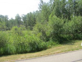 Photo 3: 398 52152 RR 210: Rural Strathcona County Rural Land/Vacant Lot for sale : MLS®# E4254227