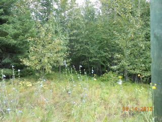 Photo 8: 6471 Lindsay Road # Site 1 in Magna Bay: Land Only for sale