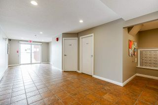 """Photo 5: 215 19774 56 Avenue in Langley: Langley City Condo for sale in """"Madison Station"""" : MLS®# R2584575"""