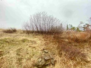 Photo 6: Lot 16-1 Highway 6 in Toney River: 108-Rural Pictou County Vacant Land for sale (Northern Region)  : MLS®# 202106393