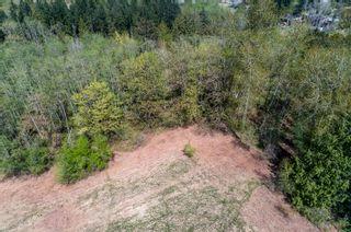 Photo 69: 11755 243 Street in Maple Ridge: Cottonwood MR House for sale : MLS®# R2576131