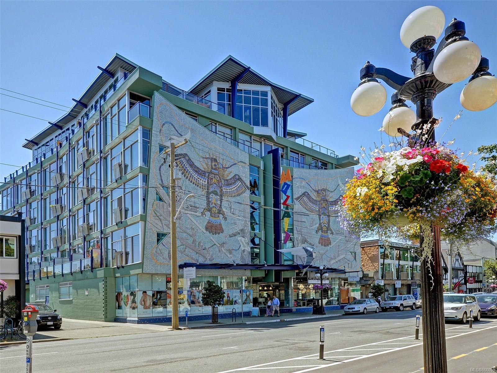 Main Photo: 311 1061 Fort St in : Vi Downtown Condo for sale (Victoria)  : MLS®# 866095
