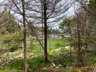 Photo 18: Lot Mushaboom Road in Mushaboom: 35-Halifax County East Vacant Land for sale (Halifax-Dartmouth)  : MLS®# 202114485