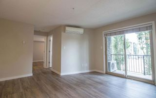 Photo 21: 215 1060 McConachie Boulevard in Edmonton: Zone 03 Condo for sale : MLS®# E4257715