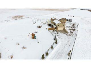Photo 32: 48142 320 Avenue E: Rural Foothills M.D. House for sale : MLS®# C4098946