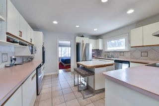Photo 13: 1329 16 Street NW in Calgary: Hounsfield Heights/Briar Hill Detached for sale : MLS®# A1079306
