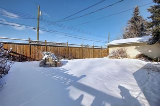 Photo 30: 67 Penmeadows Place SE in Calgary: Penbrooke Meadows Detached for sale : MLS®# A1066670