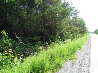 Photo 2: 236 Highway Highway in Kennetcook: 105-East Hants/Colchester West Vacant Land for sale (Halifax-Dartmouth)  : MLS®# 202116831