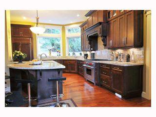 Photo 2: 1255 BURKE MOUNTAIN Street in Coquitlam: Burke Mountain House for sale : MLS®# V815696