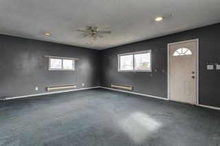 Photo 39: 4763 Rundlewood Drive NE in Calgary: Rundle Detached for sale : MLS®# A1107417