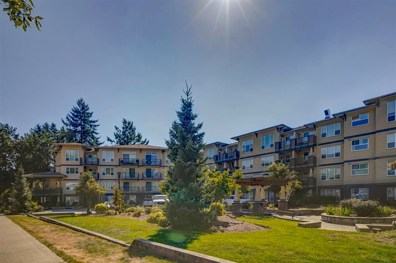 "Main Photo: 123 2565 CAMPBELL Avenue in Abbotsford: Central Abbotsford Condo for sale in ""Abacus"" : MLS®# R2571202"
