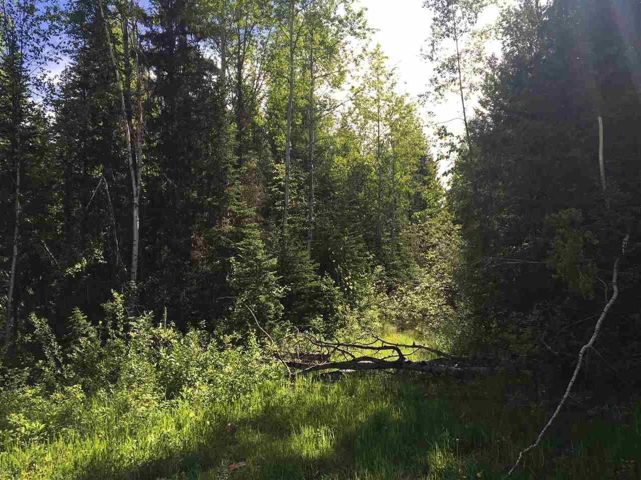Photo 4: Photos: SHAVER ROAD in Quesnel: Quesnel - Rural North Land for sale (Quesnel (Zone 28))  : MLS®# R2461973