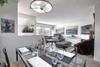 Photo 10: 136 Abingdon Way NE in Calgary: Abbeydale Detached for sale : MLS®# A1097346