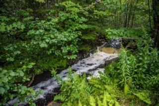 Photo 26: 1089 Waternish Road in Aspen: 303-Guysborough County Residential for sale (Highland Region)  : MLS®# 202122643