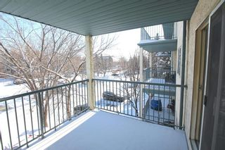 Photo 17: 314 10 Dover Point SE in Calgary: Dover Apartment for sale : MLS®# A1073058