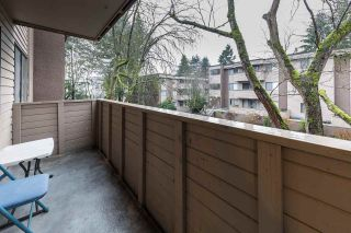 Photo 8: 24 2433 KELLY Avenue in Port Coquitlam: Central Pt Coquitlam Condo for sale : MLS®# R2230724