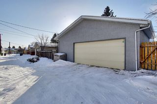 Photo 49: 28 Forest Green SE in Calgary: Forest Heights Detached for sale : MLS®# A1065576