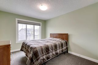 Photo 35: 39 CRANBROOK Lane SE in Calgary: Cranston Detached for sale : MLS®# C4247502