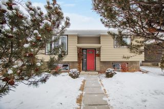 Photo 1: 4131 Doverview Drive SE in Calgary: Dover Detached for sale : MLS®# A1063702
