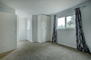 Photo 16: 92 Erin Croft Crescent SE in Calgary: Erin Woods Detached for sale : MLS®# A1136263