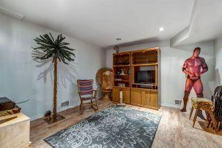 Photo 19: 8915 169 Street in Edmonton: Zone 22 House for sale : MLS®# E4209054