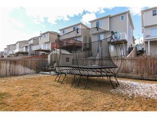 Photo 31: 216 ROYAL ELM Road NW in Calgary: Royal Oak House for sale : MLS®# C4054216