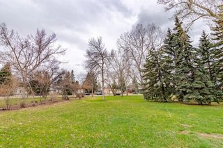Photo 46: 377 CAPRI Avenue NW in Calgary: Brentwood Detached for sale : MLS®# C4296522