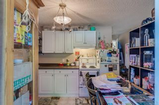 Photo 53: 629 Judah St in : SW Glanford House for sale (Saanich West)  : MLS®# 874110