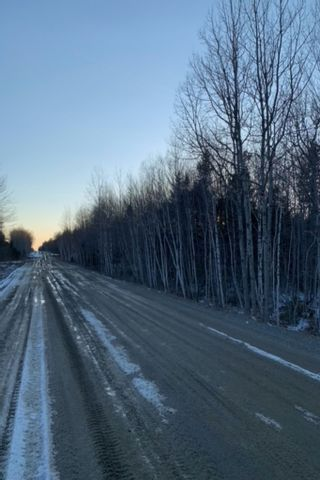 Photo 3: Lots Sissiboo Road in Bear River: 401-Digby County Vacant Land for sale (Annapolis Valley)  : MLS®# 202105338