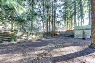 Photo 26: 3650 203A Street in Langley: Brookswood Langley House for sale : MLS®# R2542609