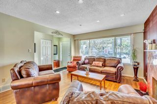 """Photo 16: 11395 92 Avenue in Delta: Annieville House for sale in """"Annieville"""" (N. Delta)  : MLS®# R2551752"""