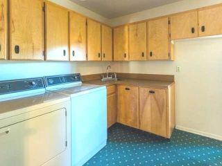Photo 77: 8548 YELLOWHEAD HIGHWAY in : McLure/Vinsula House for sale (Kamloops)  : MLS®# 131384