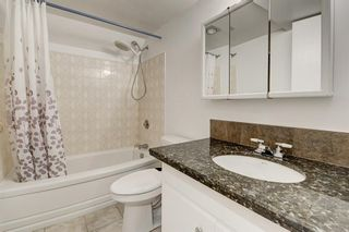 Photo 31: 183 Brabourne Road SW in Calgary: Braeside Detached for sale : MLS®# A1064696